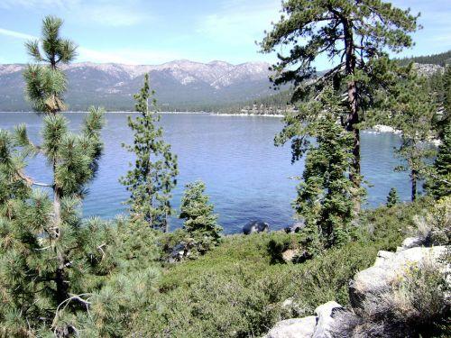 Tahoe 24