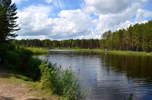 taiga forest lake