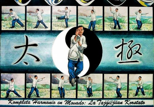 Tai Chi - Compete Harmony In Motion