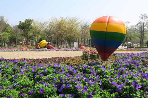 tainan's flowers offering hot qi ball duckweed farm park