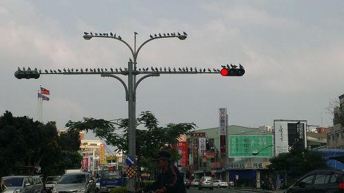 taiwan kaohsiung city