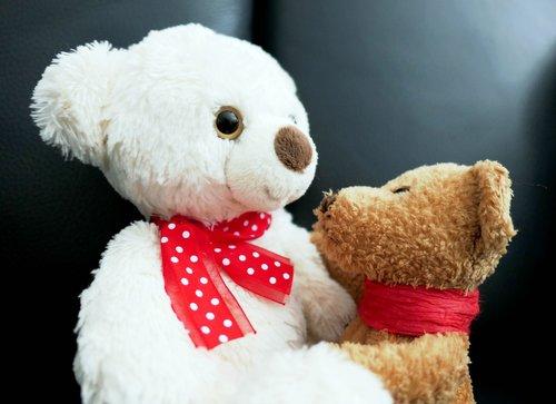 talk  bears  teddy