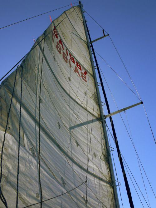 Tall White Sail