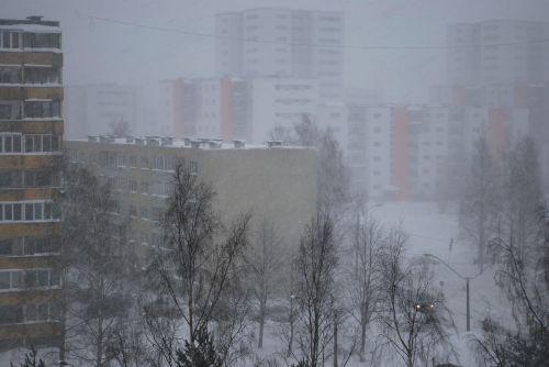 tallinn snowing house
