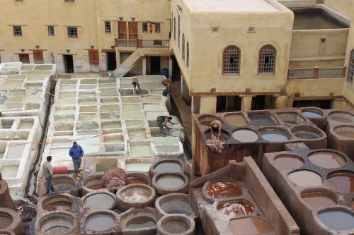 tannery morocco skins