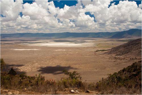 tanzania wildlife serengeti