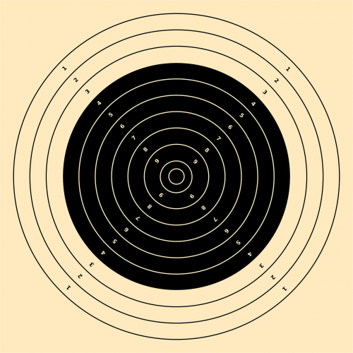 target rifle 300