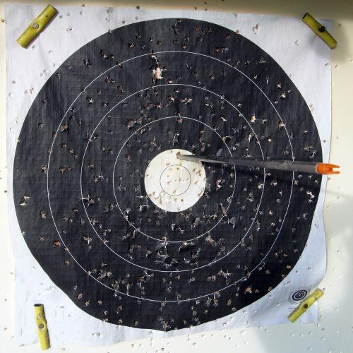 target arrow bogensport