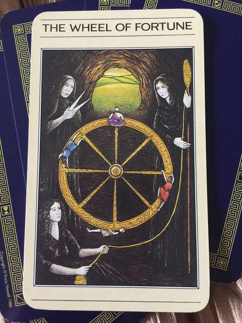 tarot  cards  mystic