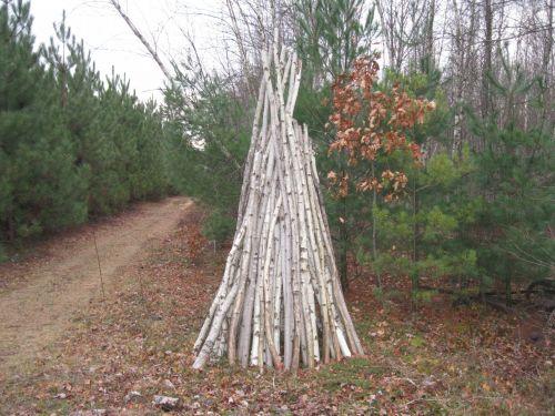 Woodpile # 2