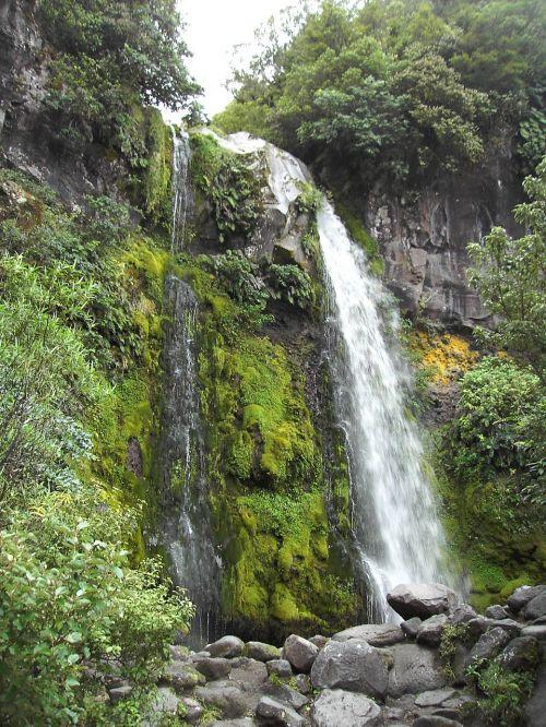 tasmania waterfall australia