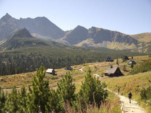 tatry hala gąsienicowa mountains