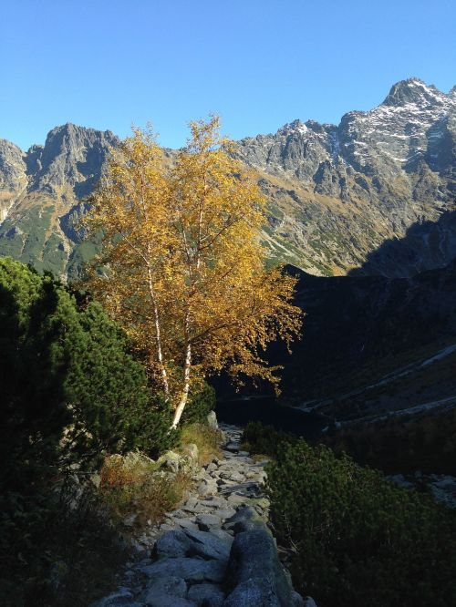 tatry autumn mountains