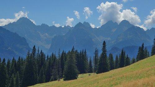 tatry  mountains  rusinowa logs