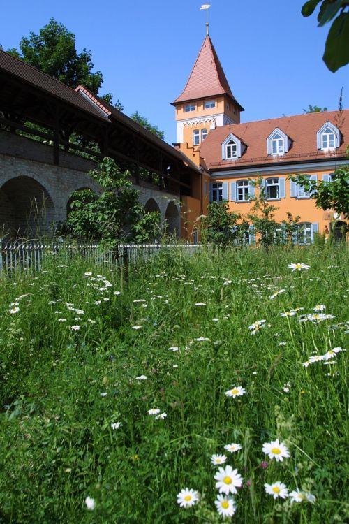 mokesčių inspekcija,gandralo bokštas,miesto bokštas,bokštas,istoriškai,bavarija,vasaros pieva,gėlės,valstybė,augalas,bokštas,lankytinos vietos