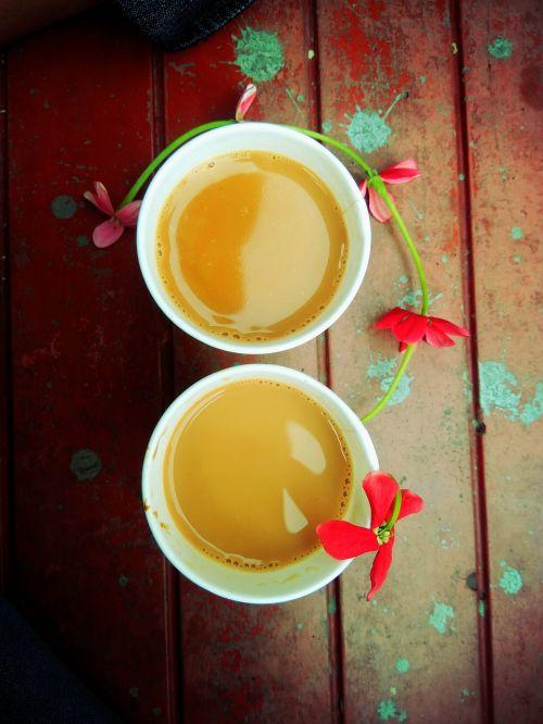 tea break flower
