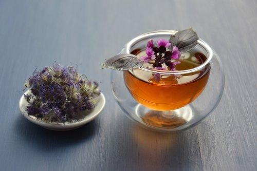 tea  herbal  drink