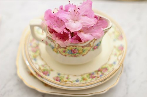 tea cup  coffee cup  creamer