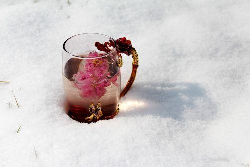 tea rose corolla enamel cup heavy snow