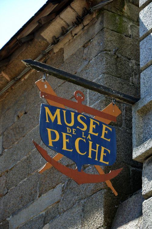 teaches museum city