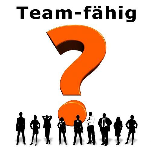 team question mark team player