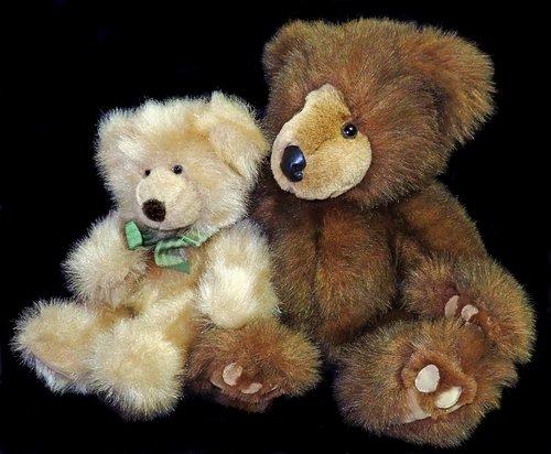 teddies  bears  fluffy