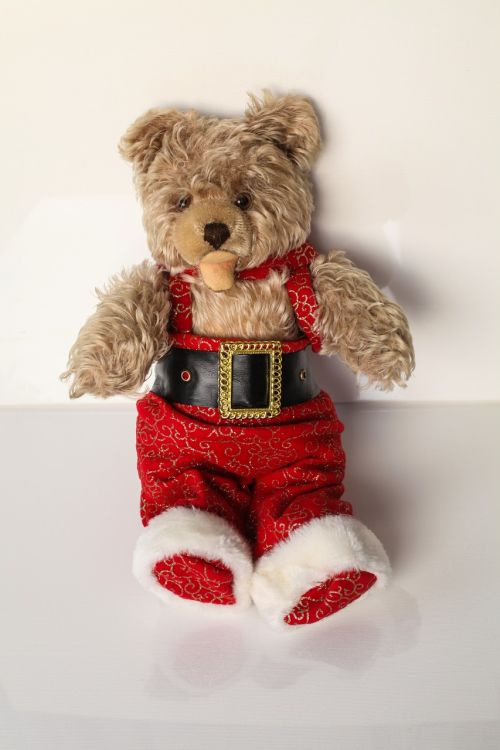 teddy christmas gift 1953