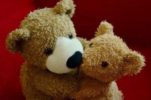 teddy teddy bear snuggle