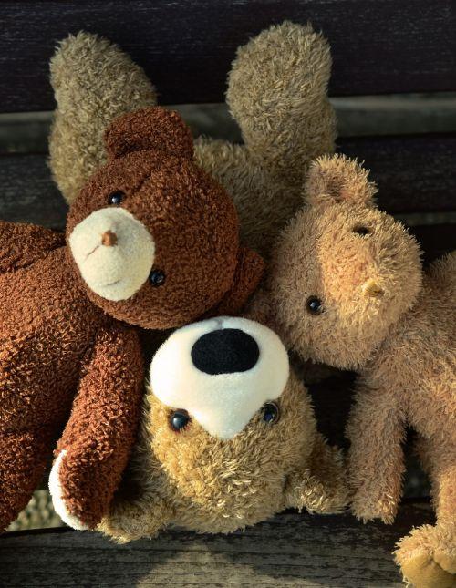 teddy teddy bears soft toy