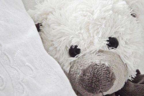 teddy toys teddy bear
