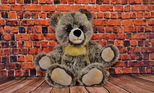 teddy soft toy steiff