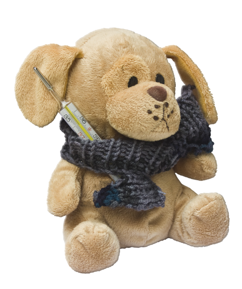 teddy dog stuffed animal