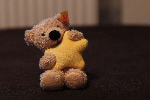 teddy teddy bear steiff