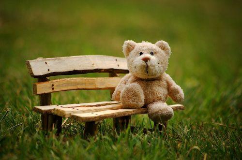 teddy soft toy funny
