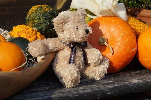 teddy  toys  furry teddy bear
