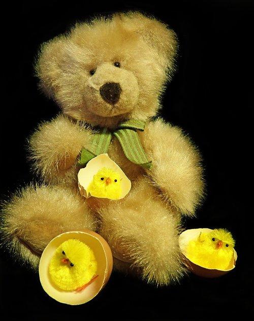 teddy  toy  fluffy