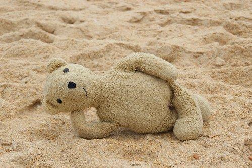 teddy  bear  beach