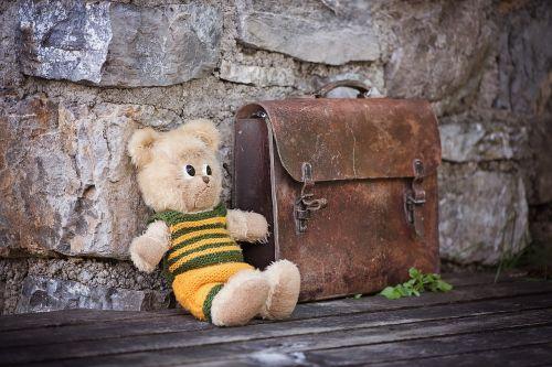 teddy teddy bear stuffed animals