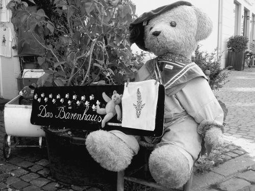 teddy teddy bear stuffed animal