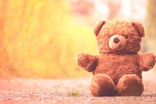 teddy bear furry teddy bear cute