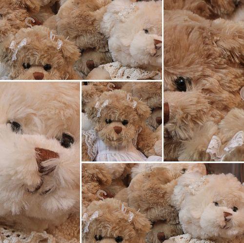 teddy bear bear fur