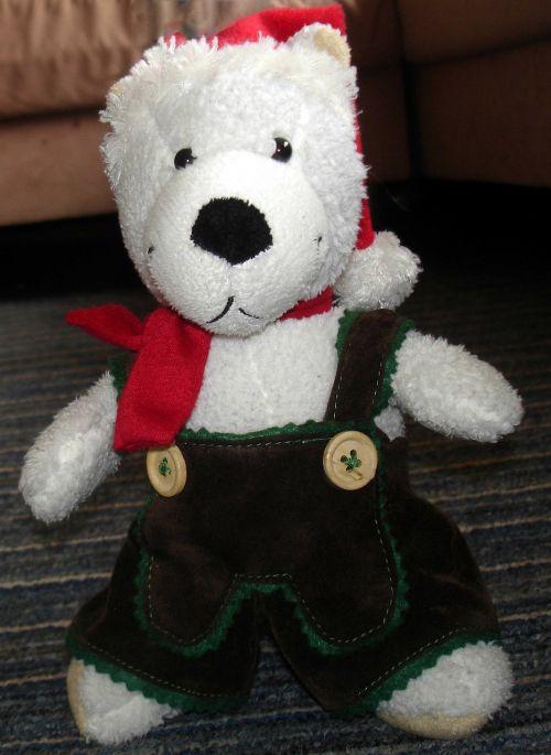 teddy bear leather pants cap