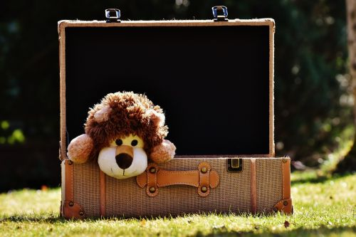 teddy bear lion luggage