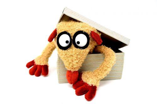teddy bear cardboard funny