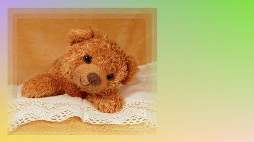 teddy bear teddy honey bear