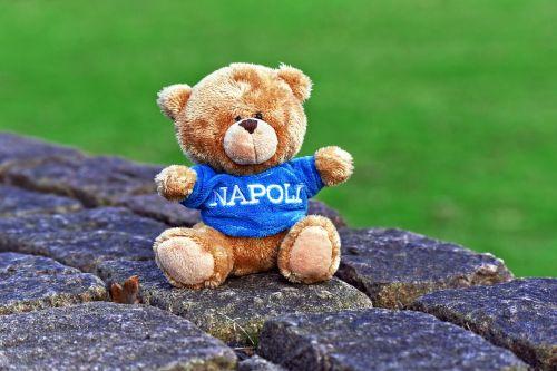 teddy bear stuffed animal cuddly toy