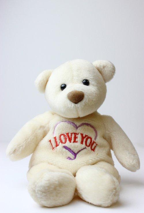 teddy bear  beanie baby  bear