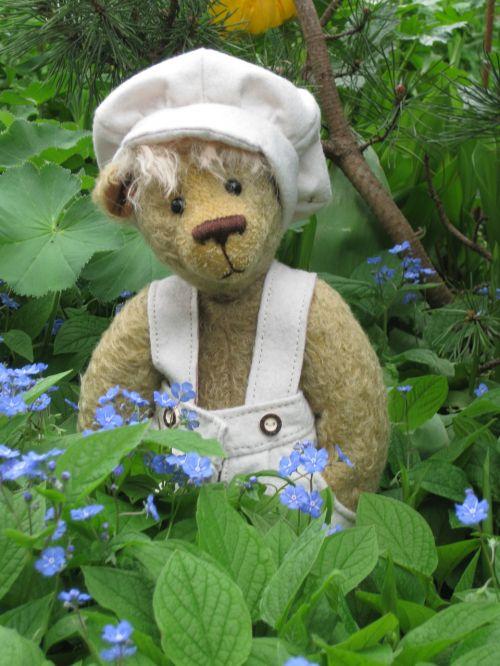 meškiukas,mielas,linksma,ruda,šviesiai ruda,žaislai,turėti,Teddy,kailis,išvalyti