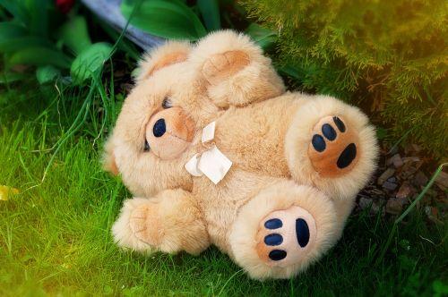 teddy bear stuffed animal soft toy