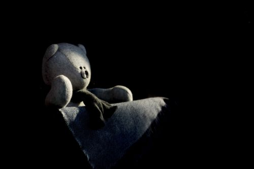 Teddy Bear In Shadow